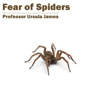 essay on fear of spiders This is my essay spiders they are neat there are a lot of facts about them and my essay is how interesting spiders are example 2 in this essay you will learn many facts about spiders and how interesting they are spiders are very cool there silk is stronger the steel they can be venomous.